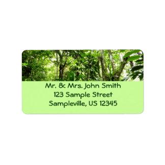 ドミニコ共和国の熱帯雨林Iの熱帯緑の自然 ラベル
