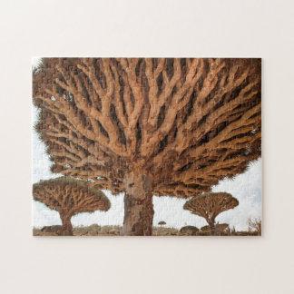 ドラゴン血の木、ソコトラ島島、イエメン ジグソーパズル