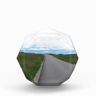 ドロマイトの夏山の道 表彰盾