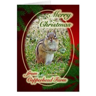 ドロレスのためのメリークリスマスの東シマリス カード