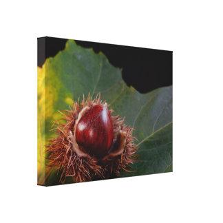 ドングリのキャンバスプリントのプリントが付いている秋の葉 キャンバスプリント
