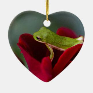 ドンジュアン赤いバラおよび緑のアマガエル セラミックオーナメント