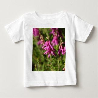 ドーセットのヒース(エリカのcilaris)の花 ベビーTシャツ