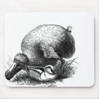 ドードーの鳥のマウスパッド マウスパッド