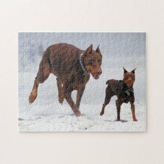 ドーベルマン犬および分Pin -一見! 小型私! ジグソーパズル