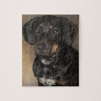 ドーベルマン犬のパズル ジグソーパズル