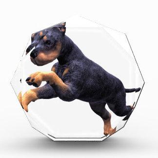 ドーベルマン犬の子犬の跳躍 表彰盾