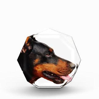 ドーベルマン犬の頭部 表彰盾