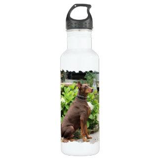 ドーベルマン犬-教会庭の… ウォーターボトル