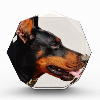 ドーベルマン犬 表彰盾