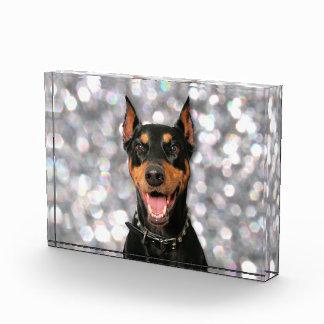 ドーベルマン犬- Megyan 表彰盾
