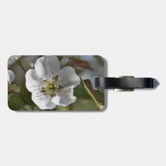 ナシの花のくも ラゲッジタグ