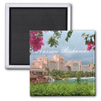 ナッサウバハマ旅行写真の記念品の冷蔵庫用マグネット マグネット