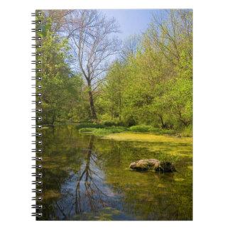 ナッシュビルの近くの入り江に沿う早い春 ノートブック