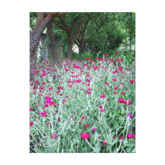 ナデシコの庭 キャンバスプリント