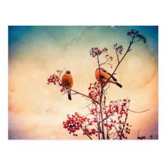 ナナカマドのBullfinchは3つを織りました ポストカード
