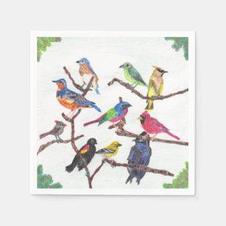 ナプキンの置かれる集まるカラフルな鳴き鳥 スタンダードカクテルナプキン