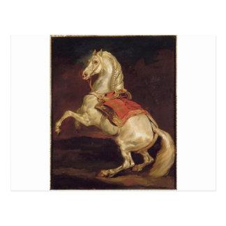 ナポレオンの種馬、セオドアGericaul著Tamerlan ポストカード