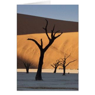 ナミビアのナミブ砂漠、Sossusvlei、 カード