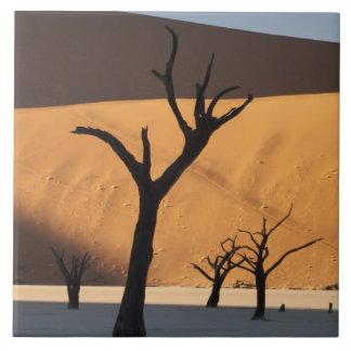 ナミビアのナミブ砂漠、Sossusvlei、 タイル