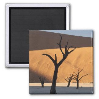 ナミビアのナミブ砂漠、Sossusvlei、 マグネット