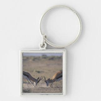 ナミビアのEtoshaの国立公園、2男性 キーホルダー