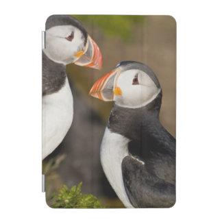 ニシツノメドリ、示されている遠洋の海鳥 iPad MINIカバー
