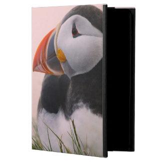 ニシツノメドリ(Fraterculaのarctica) 6 iPad Airケース
