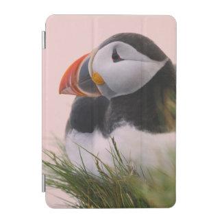 ニシツノメドリ(Fraterculaのarctica) 6 iPad Miniカバー