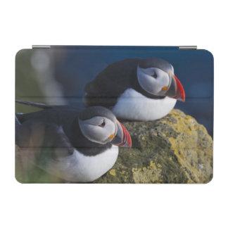 ニシツノメドリ(Fraterculaのarctica) 7 iPad Miniカバー