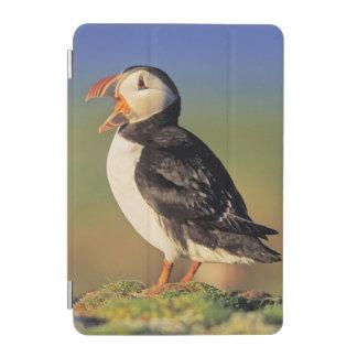 ニシツノメドリ(Fratercula Arctica) iPad Miniカバー