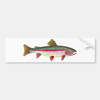 ニジマスの魚 バンパーステッカー