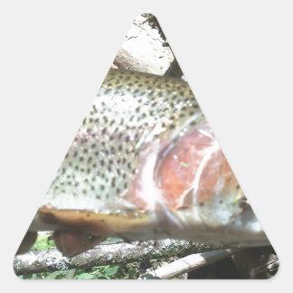 ニジマス 三角形シール