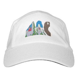 ニットの性能の帽子 ジャクソンホール、WY (JAC) ヘッドスウェットハット