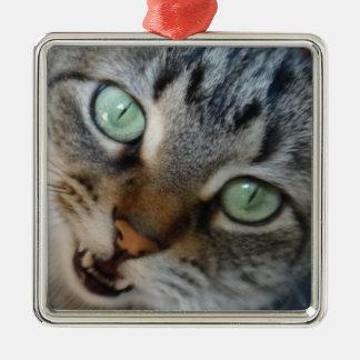 ニャーと鳴いている虎猫 メタルオーナメント
