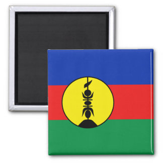 ニューカレドニアの旗の磁石 マグネット