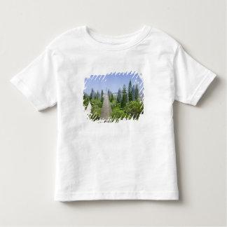 ニューカレドニアのTerreのグランデ島、ヌメア トドラーTシャツ