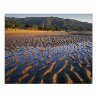 ニュージーランドのアベルTasmanの国立公園、海岸2 ポスター