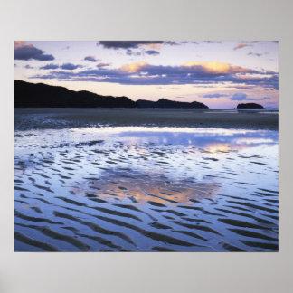 ニュージーランドのアベルTasmanの国立公園、海岸 ポスター