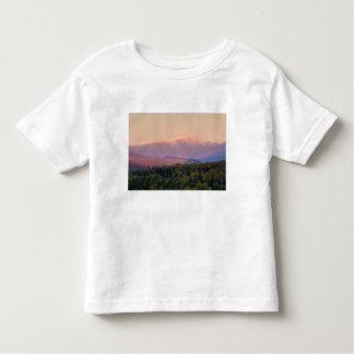 ニューハンプシャーの薄暗がりおよび山ワシントン州 トドラーTシャツ