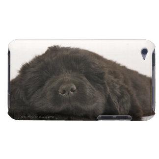 ニューファウンドランドの子犬の睡眠(イヌ属のfamiliaris)。 Case-Mate iPod touch ケース