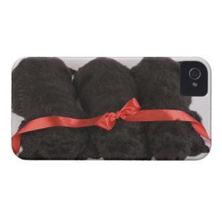ニューファウンドランドの子犬の睡眠(イヌ属 Case-Mate iPhone 4 ケース