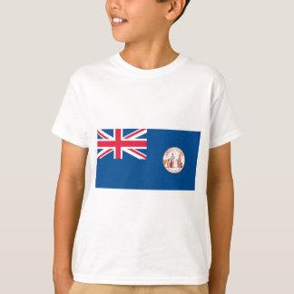 ニューファウンドランドの旗(1904-1980年) Tシャツ