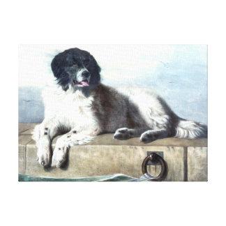 ニューファウンドランド犬のヴィンテージの絵を描くこと キャンバスプリント