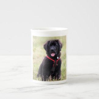 ニューファウンドランド犬の子犬のかわいく美しい写真、ギフト ボーンチャイナカップ