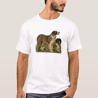 ニューファウンドランド犬の服装 Tシャツ