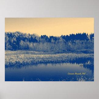 ニューファウンドランド、カナダ、湿地帯の木および水 ポスター