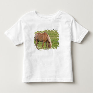 ニューブランズウィック、カナダ。 分野の馬 トドラーTシャツ