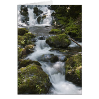 ニューブランズウィック、カナダ。 FundyのDicksonの滝 カード