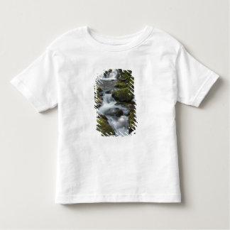 ニューブランズウィック、カナダ。 FundyのDicksonの滝 トドラーTシャツ